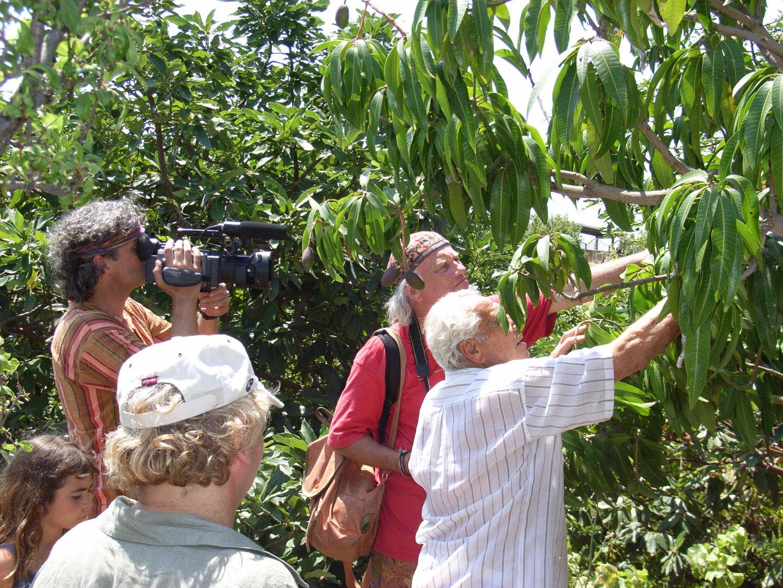 salobreña visita finca ecologica 093