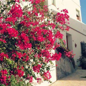 Calle Muralla Casco Antiguo Salobreña