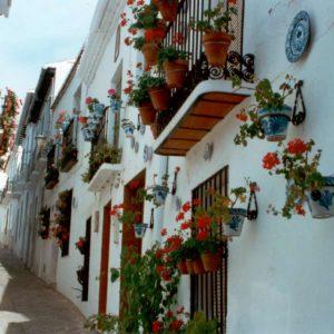 Calle Real en Casco Antiguo Salobreña