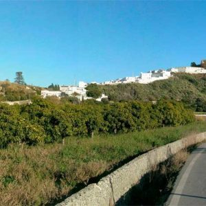 Camino del Gambullón Salobreña