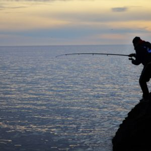 Pesca en Salobreña
