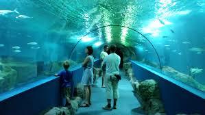 acuario almuñecar