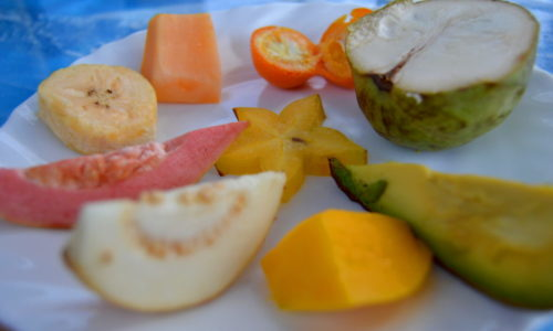 tropical local produce tropical fruits tasting costa tropical spain