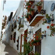 Salobreña Calle Real