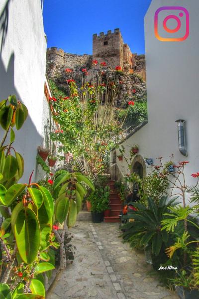 Vista del Castillo. Calle Tajillo. Casco Antiguo. Salobreña.   Foto de José Mira. Salobreña Costa Tropical Andalucia España