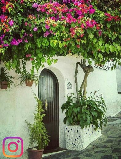 Buganvilla. Calle Arrabal Villa. Salobreña. Salobreña Costa Tropical Andalucia España